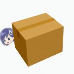 規約違反してるかも?FBA納品箱のサイズを再確認
