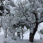 凍結した道を華麗に歩くための注意事項
